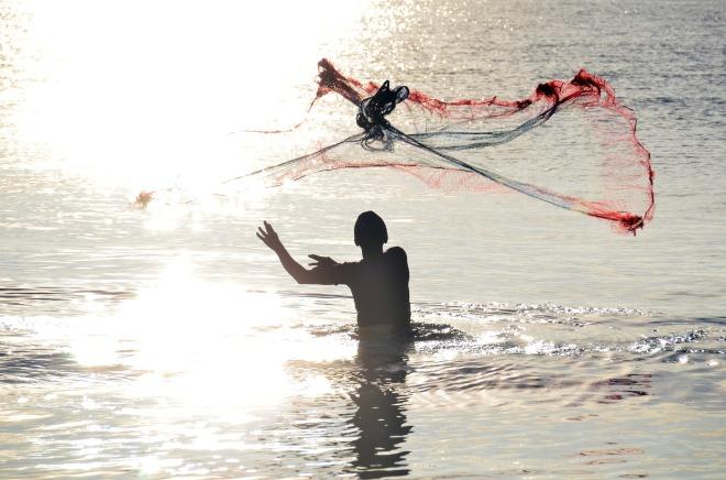 fisherman waist high in water throwing fishing net and facing into sun.