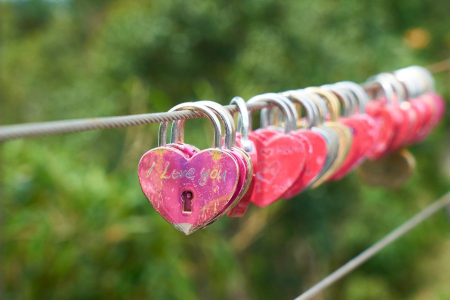 heart shaped locks on line